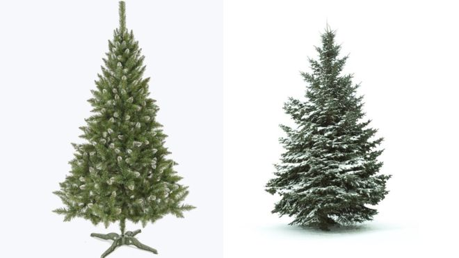 Christmas Trees: Real Or Fake?